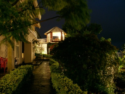 Night View of Backyard